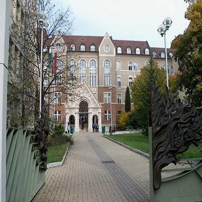 کالج پچ مجارستان